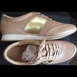 Raylen suede/Mire Met Beechwood/platinum sneakers